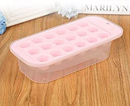 PP With Lid With Bottom Box Plum 18 Grid Ice Box Pink