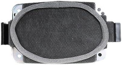 ACDelco 15071125 GM Original Equipment Rear Radio Speaker