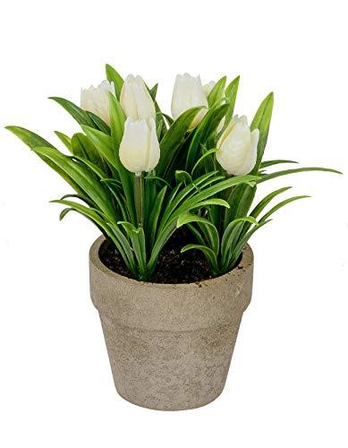dekojohnson Künstlich blühende Tulpen im Terrakotta-Topf Deko-Pflanze lebensechte Kunst-Blumen Plastikblume Frühjahrsblüher grün weiß13cm Osterdeko