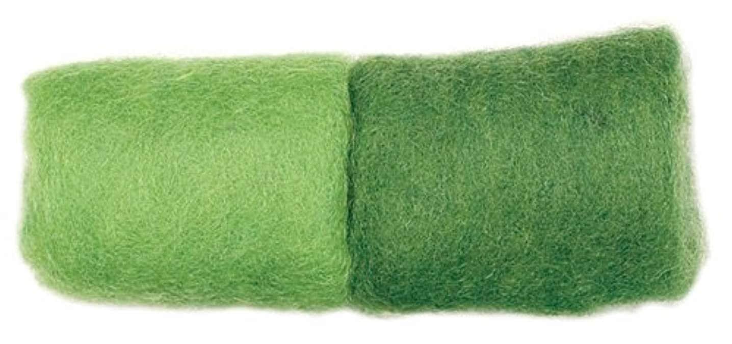 Dimensions Needlecrafts Feltworks Wool Roving, Spring Green - Spruce Roving