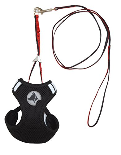 Croci Hiking Set de Harnais pour Chien Mesh Noir 26 à 29 cm