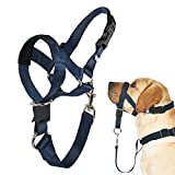 Barkless Dog Head Collar, No Pull Head Halter for Dogs, Adjustable, Padded Headcollar with Training Guide - Stops Pulling and Choking on Walks, Navy Blue, M