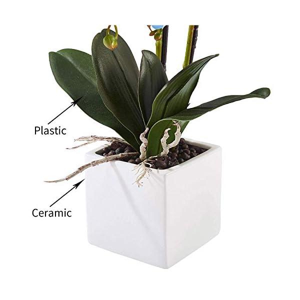 Flores Artificiales Plástico Flor de Phalaenopsis Realista Orquídea Mariposa con Maceta Imitación Cerámica Decoración