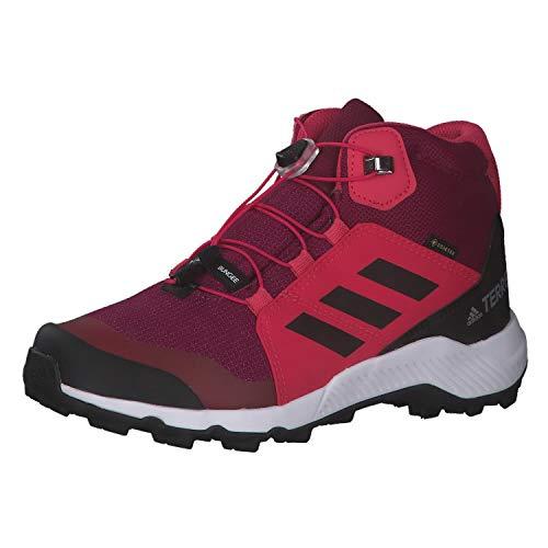 adidas Terrex Mid GTX K, Zapatillas de Hiking, BAYINT/NEGBÁS/ROSINT, 36 2/3 EU