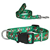 """RYPET Christmas Dog Collar and Leash - Santa Claus Pattern Adjustable Collars for Dogs, Small, Neck 8""""-12.5"""""""