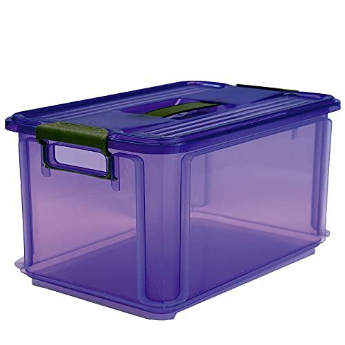 Denox Caja Ordenación, Violeta, 48.5x33.5x26 cm
