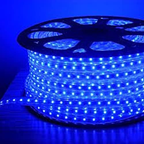 Bright Electronics Decorative 10 Meter LED Rope Light Water Proof Color Blue With Adapter