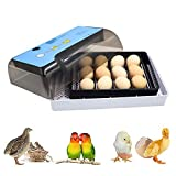 Egg Incubator, Automatic Turning and Hatching Poultry Hatcher with Temperature Control 12 Egg Incubator Breeder for Chicken, Ducks, Birds