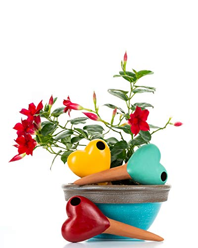 Unique Terracotta Watering Globes Shapes  3 Self Watering System Spikes Automatic Plant Waterer Irrigation Drippers  Plant Watering Wands Keep Indoor Plants Hanging Pots Hearts Red Blue Yellow