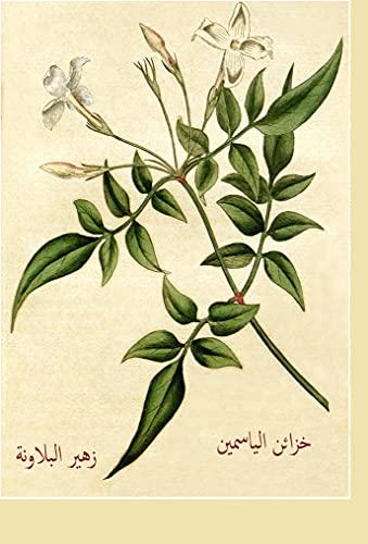 خزائن الياسمين: خزائن الياسمين (Arabic Edition)