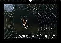 Voll vernetzt - Faszination Spinnen (Wandkalender 2022 DIN A3 quer): Ob im Netz oder im Gegenlicht, die Welt der Spinnen ist faszinierend (Monatskalender, 14 Seiten )