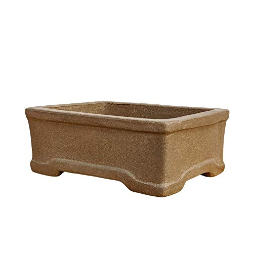 Bonsai Pot from Unglazed Clay - 6' Planter for Succulents, Small Plants, Dwarf Bonsai Trees + Indoor and Outdoor Gardens and Windowsill Decor