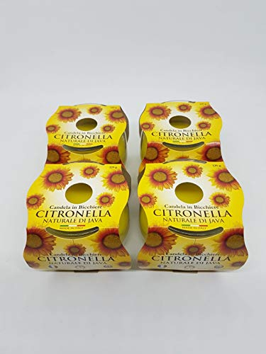 New Prices Citronella Garden Candle in A Glass Jar Approx 25hrs Burn Time (4)