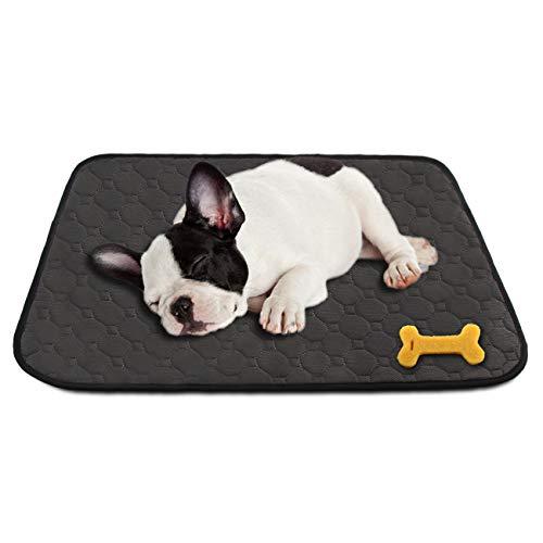 MeijieM 2 Piezas Alfombras de Adiestramiento para Perros y Gatos - Pañales Impermeable Sanitarias Lavables y Reutilizables para Mascotas Pequeños y Medianos(60 * 45cm)