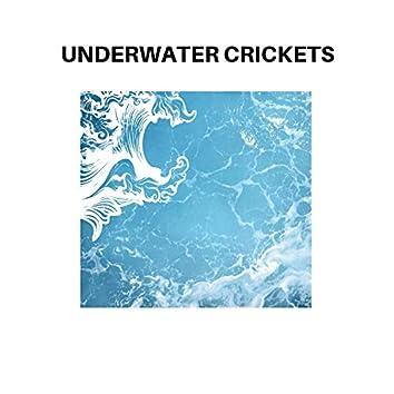 Underwater Crickets