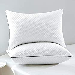 Image of GOHOME Bed Pillows for...: Bestviewsreviews