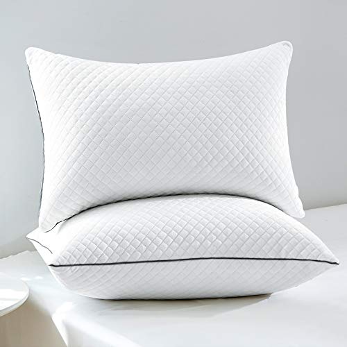 """GOHOME Queen Pillows for Sleeping 2 Pack, Luxury Velvet Hypoallergenic Hotel Quality Pillows with Fluffy Fill, Sleeping Soft Firm Adjustable Pillows for Side, Back, Stomach Sleepers Set of 2-20""""x30"""""""