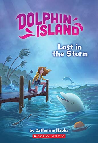Lost in the Storm Dolphin Island product image