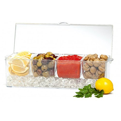 Brilliant - Patio acrylic Chilling 4 Section Dish on Ice Tray