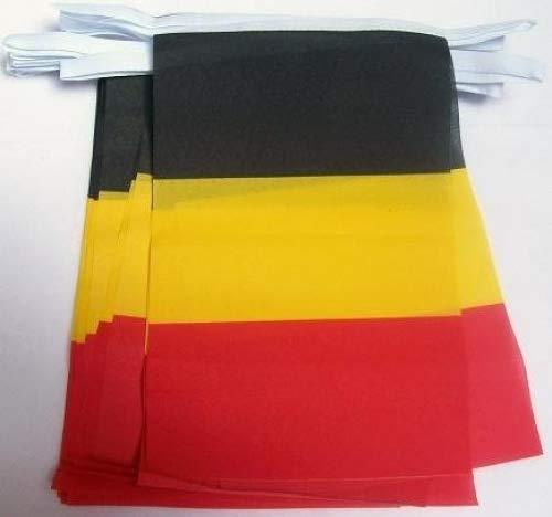 6m 20 Vlag België Belgisch materiaal Bunting