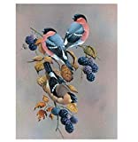 Ksyklys Pinte con Number Kit, DIY Pintura al óleo Animal pájaro Lienzo para Dibujar con Pinceles Decoración navideña Regalos - 16 * 20 Pulgadas sin Marco