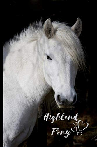 Highland Pony Notebook: Composition Notebook 6x9' Blank Lined Journal