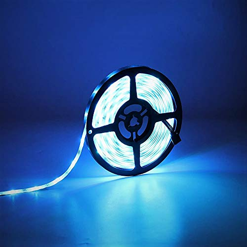 Houkiper Tira LED 12v, 5m 300 LED SMD 5050, Tiras de LED Blanco Frío IP65 Impermeable 6000K para Techo, Escaparate, Muebles,Pasillo Baño Armario Cocina (No Incluido Fuente de Alimentación)