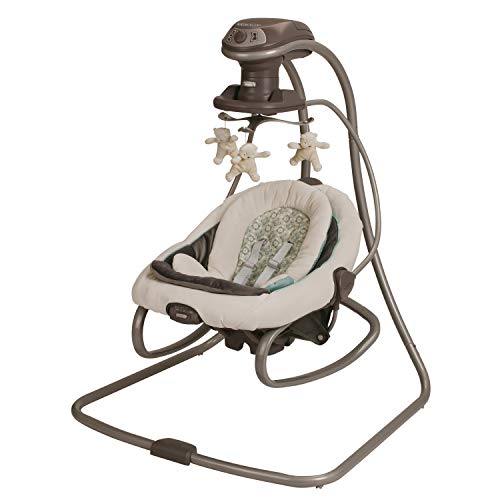 Graco DuetSoothe Swing with Rocker, Winslet
