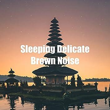 Sleeping Delicate Brown Noise