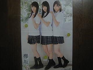 ポスター 渡邉理佐 菅井友香 渡辺梨加 欅坂46