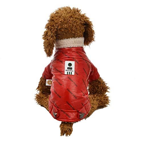 Coversolat Hundejacke Kleine Hunde - Winter Hundemantel mit Knopfe Wasserdicht Welpen Lederjacke