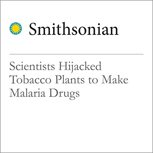 Scientists Hijacked Tobacco Plants to Make Malaria Drugs cover art