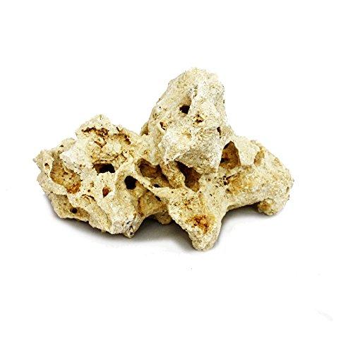 Sansibar Rock Taille M 13-17 cm