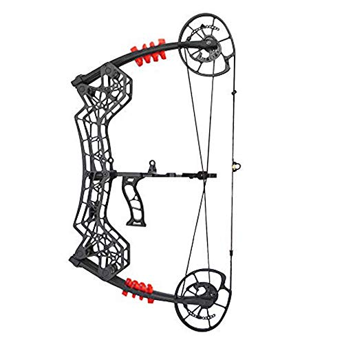 ZSHJG 30-60lbs Compound Bow Archery Dual-use Steel Ball Compound Bow Twin Cam Drew Length 20'-30' Adjustable Hunting Equipment IBO Speed 310fps Right Hand