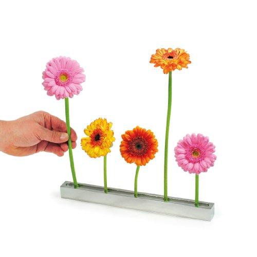 XXD Blumenallee Steckvase - eine Vase die beeindruckt Design