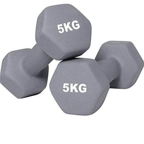 YQCH Mancuerna Mujer Fitness Dumbbell gimnas Gimnasio Dama casera aeróbica Ejercicio Equipo Barra Muscular tonificación Quemar Calorie mancuerna (Color : 5kg(11LBS)*2)