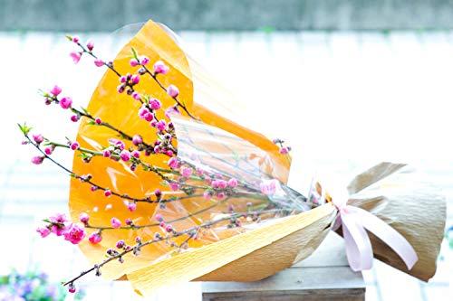 ギフト ひなまつり 指定日配達 プライムお急ぎ便 生花 桃と春の花のおまかせ花束 桃の節句 ひなまつり 春のアレンジメント 誕生日 結婚記念日 お祝い 開店祝い 還暦 母の日 花 プレゼント (桃の花束)