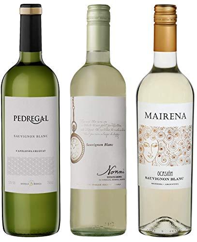 Atlantik Weine, Südamerika Sauvignon Blanc Probierpaket, Weinpaket mit Weisswein aus Argentinien und Uruguay, trocken (3 x 0,75l)