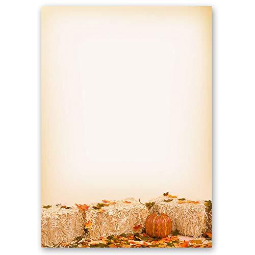 20 Blatt Briefpapier Jahreszeiten - Herbst HERBSTLAUB - DIN A4 Format - Paper-Media