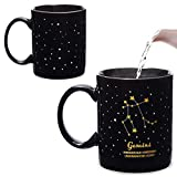 Color Changing Mug, Gemini Zodiac Astrology Sign Cup (11 oz)