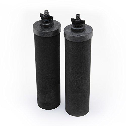 Berkey Black Berkey Purification Elements, Pack of 2