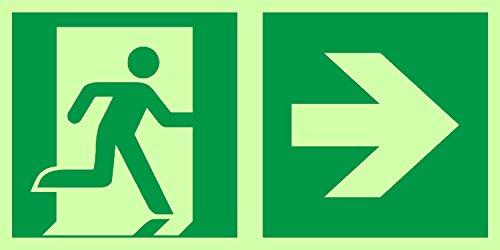 Anro Warnschild für Notausgang E002/1 | Nachleuchtendes PVC Sicherheitsschild Fluchtweg | Selbstklebend Rettungsweg-Schild für Betriebe, Produktion & Kliniken | Farbe: Grün