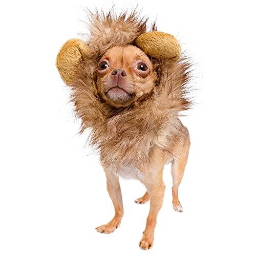 Pet Krewe Dog Lion Mane Halloween Costume – Fits...