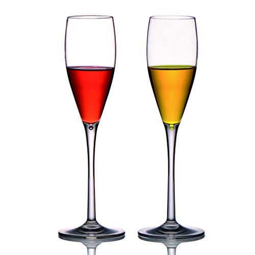 MICHLEY Unbreakable Champagne Flutes Glasses, 100% Tritan Plastic Shatterproof Wine Glasses, BPA-free, Dishwasher-safe 5.3 oz, Set of 2