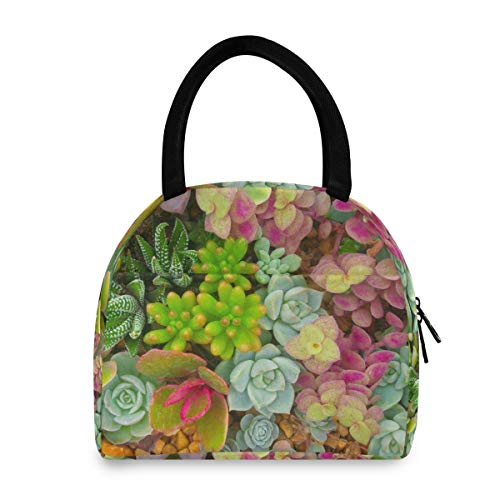 WYZQ Bolsa de Almuerzo Suculentas Planta de Flores Granja Mujer Hombre Fiambrera para la Escuela Picnic Viaje Trabajo para Adolescentes Almacenamiento de Alimentos