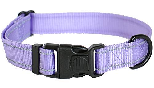 ICON Collars - Reflective Lockable Nylon Dog Collar Small Medium Large Sizes (Medium, Lavender Iris)