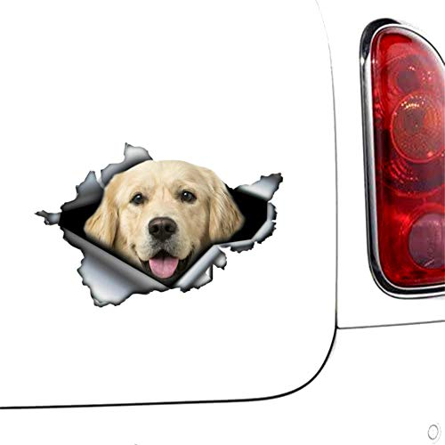 3D Auto Aufkleber Golden Retriever Zerrissene Metallstoßstange Lustige Autoaufkleber Fenster Kofferraum Tier 3D Styling Reflektierende PVC-Aufkleber, 13 cm 8,8 cm