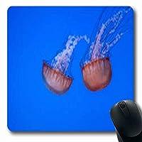 マウスパッドゼリー魚水泳青点灯野生動物エイリアン海洋長方形7.9 X 9.5インチ長方形ゲームマウスパッド滑り止めラバーマット