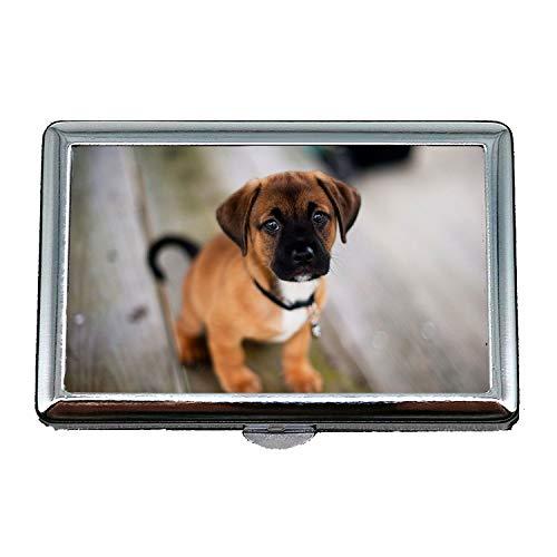 Netter Edelstahlkasten oder Zigaretten-Kasten, süßer Hund Shih Tzu Hundes, Visitenkarten sauber