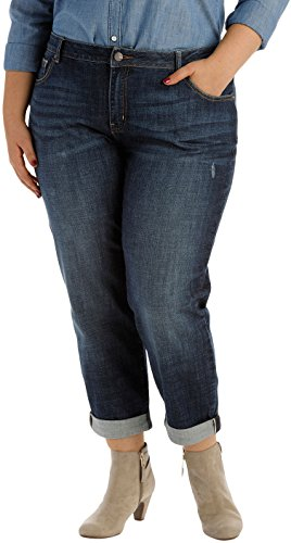 Lee Women's Plus-Size Modern Series Curvy-Fit Ruby Boyfriend Jean, Dreamer, 20W Petite